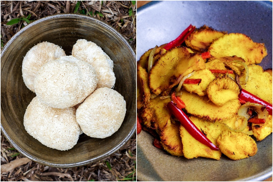 Raw lion's mane mushroom (left) and cooked with kunyit to mimic meat. Photo: Michelle Yip